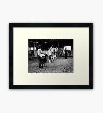 Goat Show Framed Print