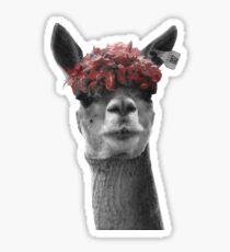 Red Headed Llama Sticker