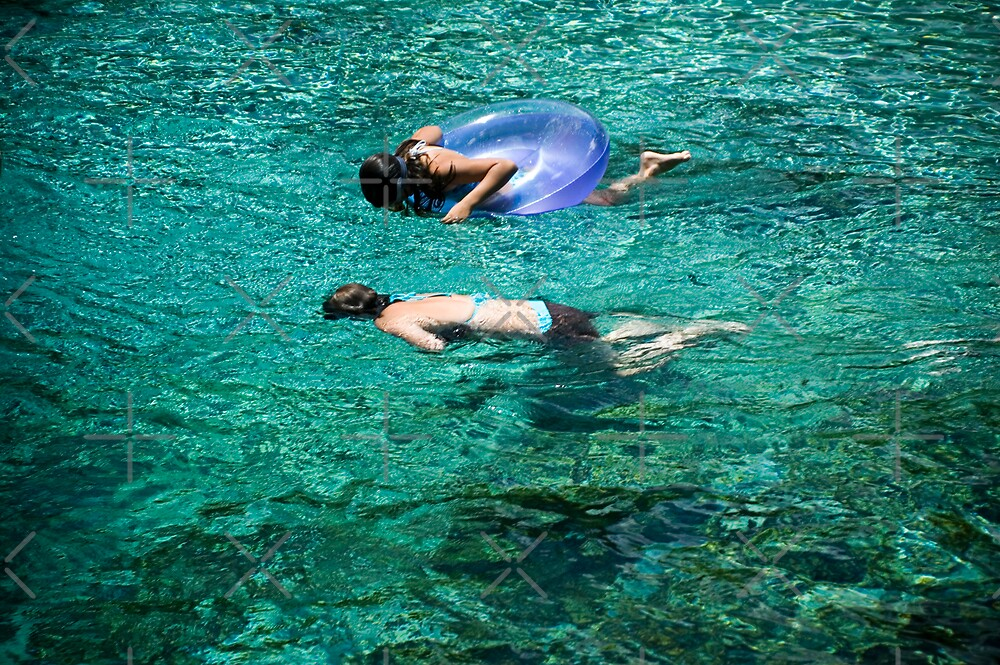 Snorkeling in the Spring by Stacey Lynn Payne