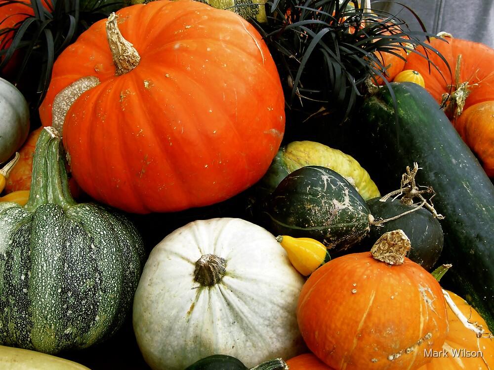 Pumpkin Collection by Mark Wilson