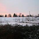 snow sunrise by Bruce  Dickson