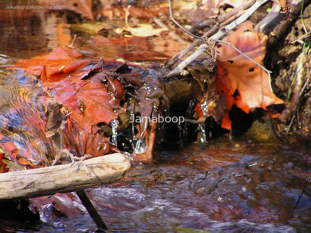 Falling leaves by Jamaboop
