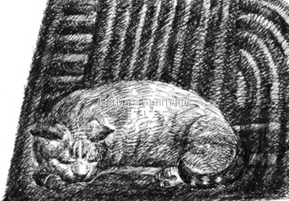 Astrid Asleep, The Barn, Carmel Valley by Barbara Sparhawk