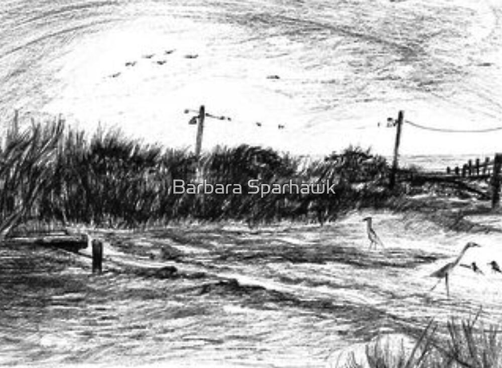 Winter Low Tide in Biloxi, Mississippi by Barbara Sparhawk