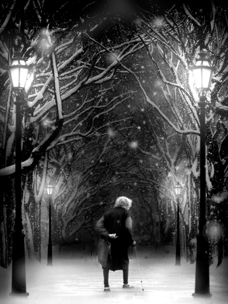Still Lonely December 26 by Cliff Vestergaard