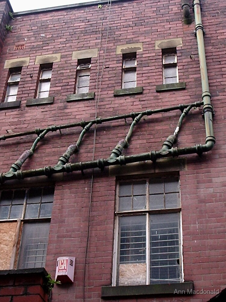 set of pipes on a wall by Ann Macdonald