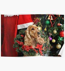Merry Cocker Christmas Poster