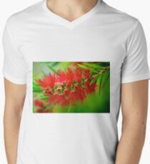 Scarlet Bottlebrush - Callistemon Men's V-Neck T-Shirt