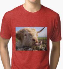 Boris Lundy Island Tri-blend T-Shirt
