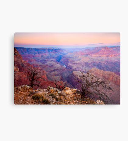 Grand Canyon Dawn Metal Print