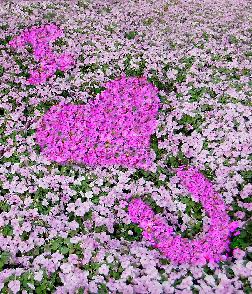 Flower Love by BiGPaPa