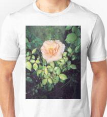 peach orange rose 2 04/02/17 T-Shirt