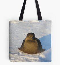 Skua Bird Tote Bag