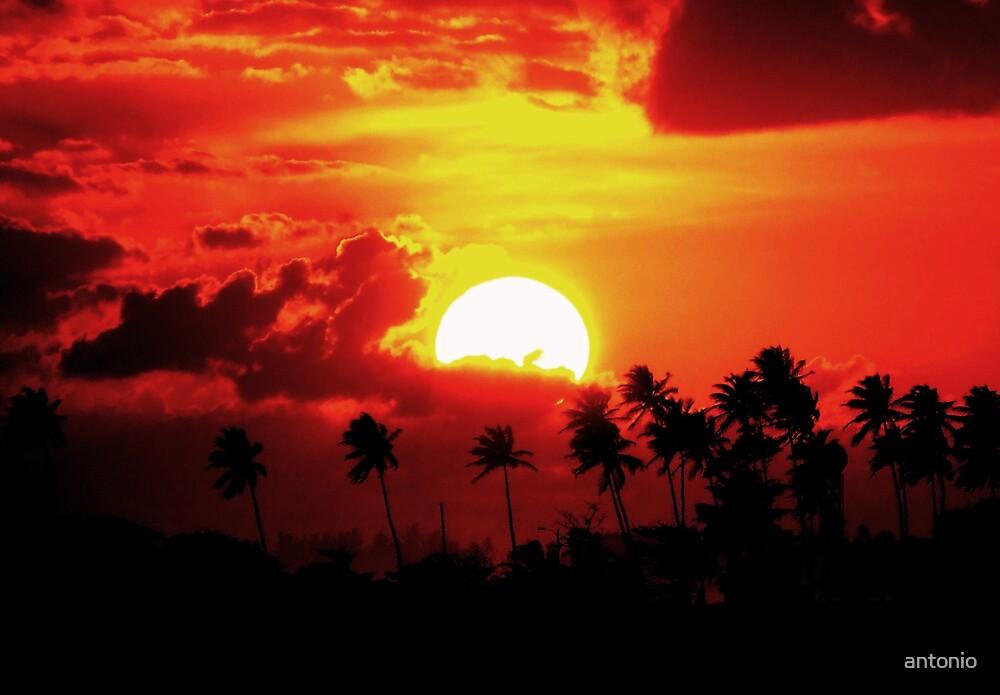Perfect Sunset by antonio