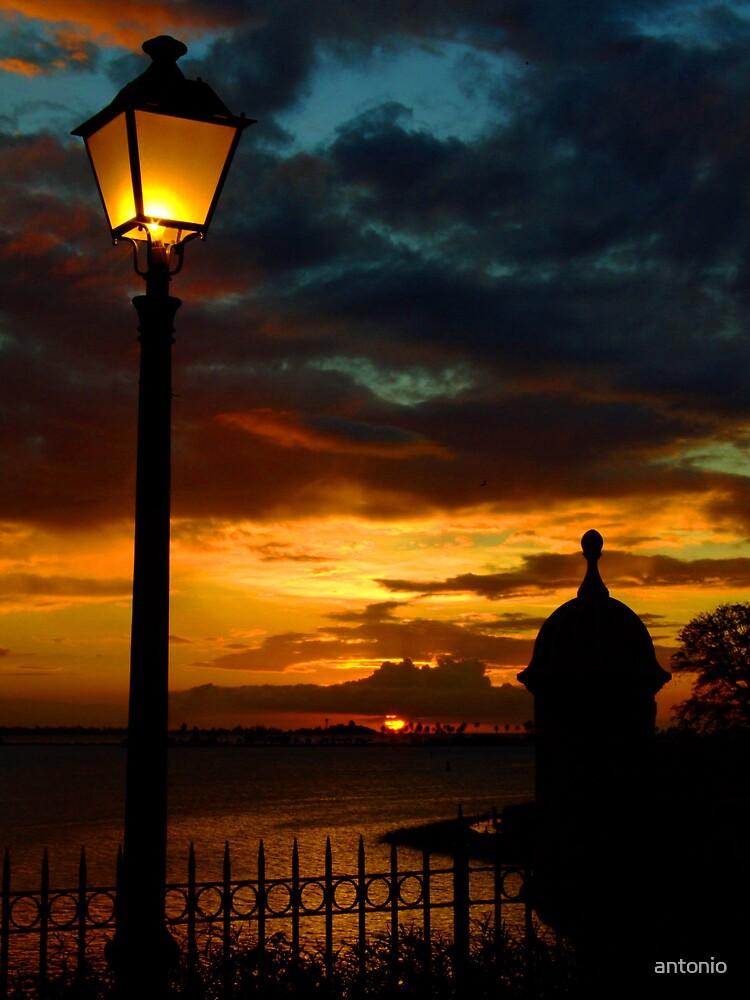 The Light by antonio