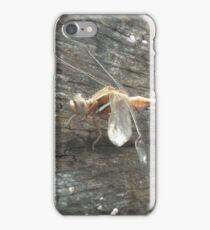 Twostriped Skimmer iPhone Case/Skin