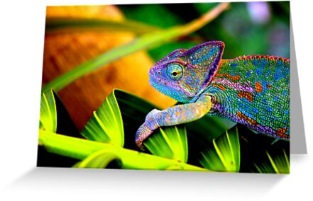 Chameleon by masterpiececreations