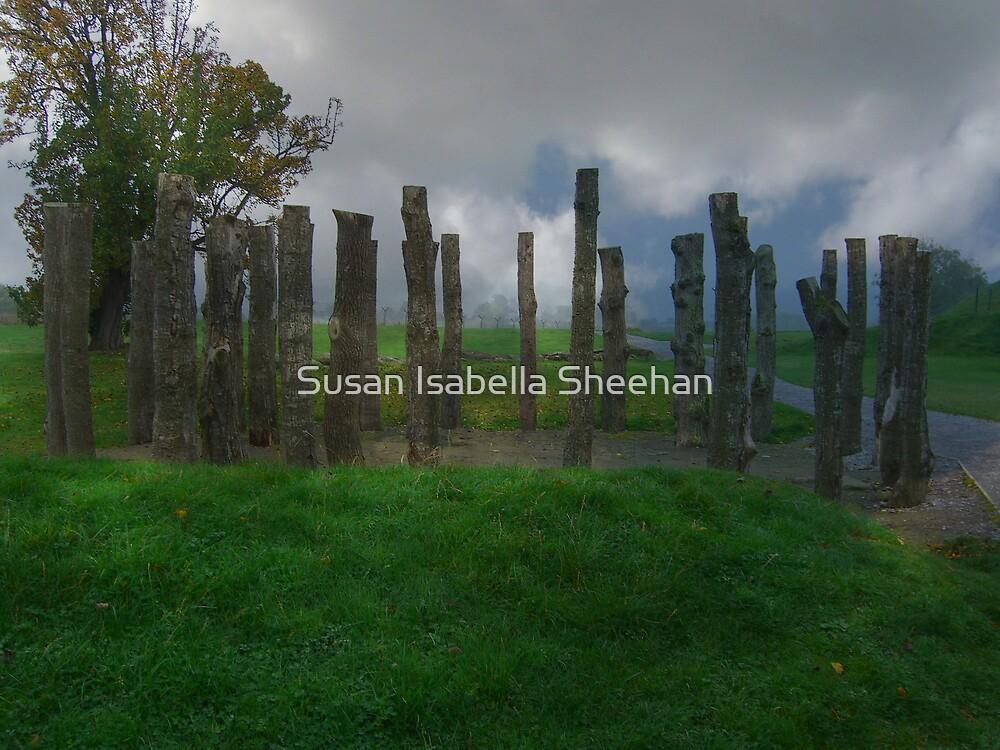 The Woodhenge At Knowth by Susan Isabella  Sheehan