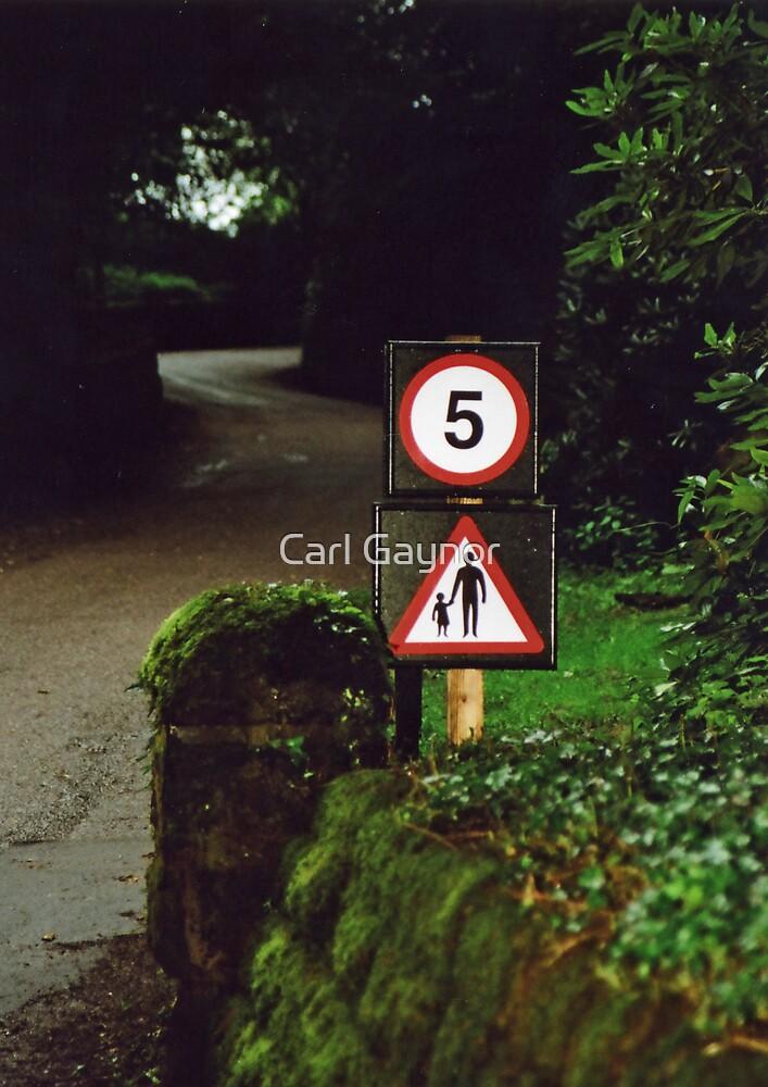 Control  by Carl Gaynor