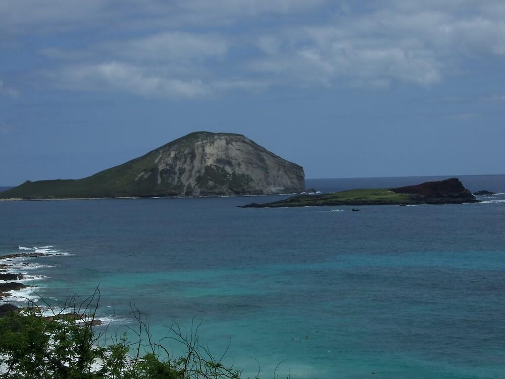 Hawaii Beach 5 by Lainey Simon