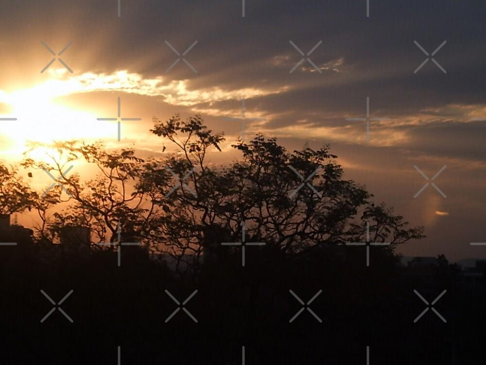 Summer Sunset by Peter Green