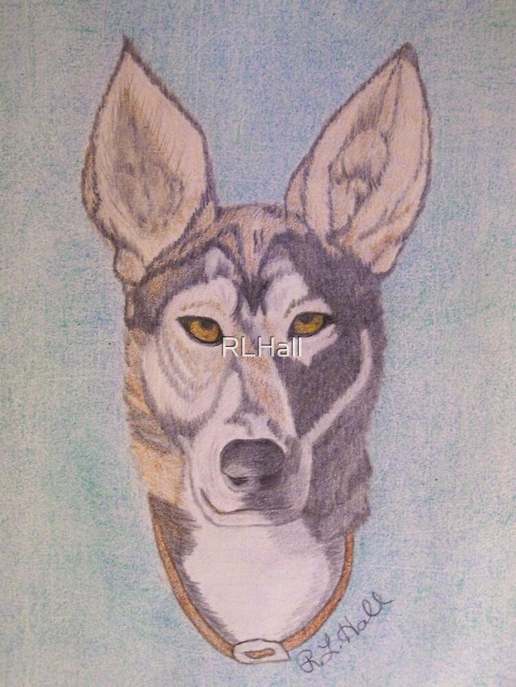 Dog Friend by RLHall