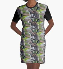 Sweet Kitty... Graphic T-Shirt Dress