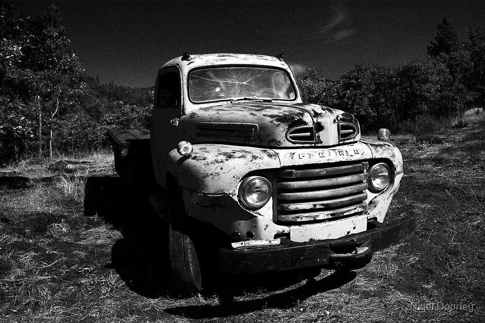 One Careful Owner by Nigel Dourley