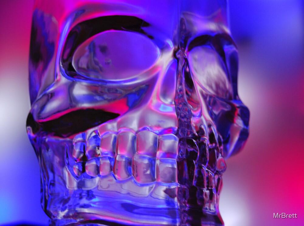 Skull by Brett Sadhwani