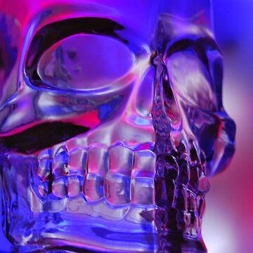 Skull by MrBrett