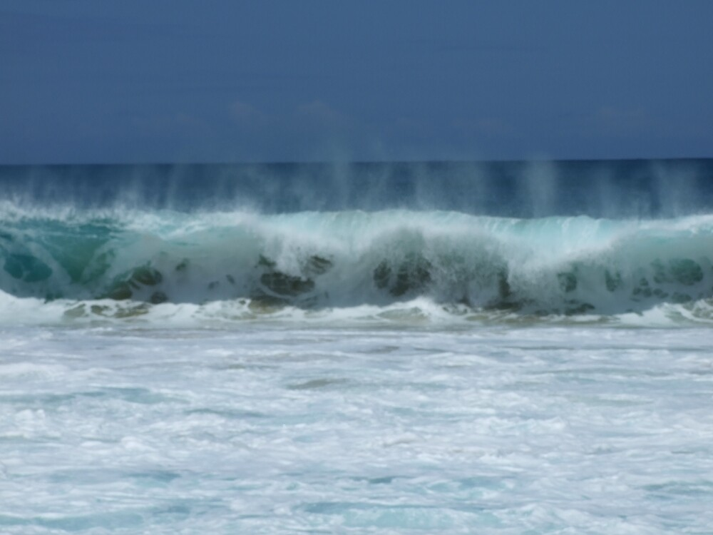 Hawaii Waves  by Lainey Simon