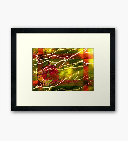 Pretty Package Framed Print