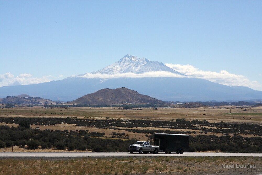 Shasta by Nigel Dourley