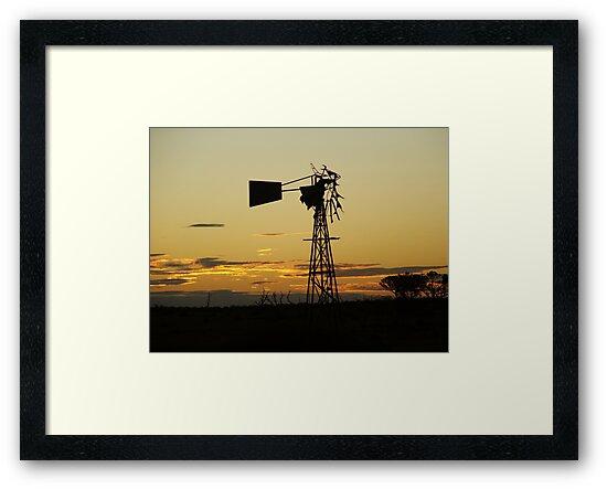windmill by bushdrover