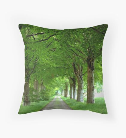 Old Traditional Countryroad with Oak Trees Throw Pillow