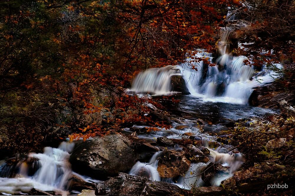 Kent Fall  by pzhbob