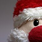 Father Christmas by Nigel Dourley