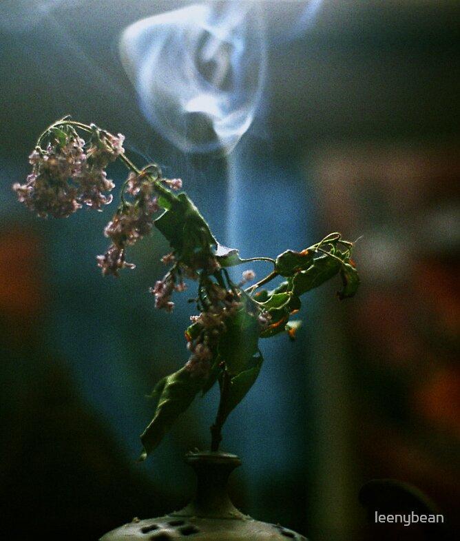 smokes by leenybean