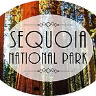 SEQUOIA NATIONAL PARK CALIFORNIA REDWOOD MOUNTAINS HIKE HIKING CAMP CAMPING 4 by MyHandmadeSigns