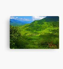 Can Ho, Sapa, Vietnam. Canvas Print