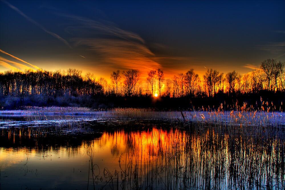 Lillie Park Sunset by Murtasma