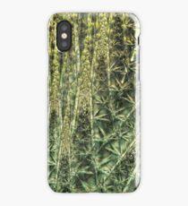 Bamboo depths iPhone Case/Skin