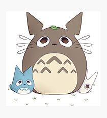 Totoro & Friends Photographic Print