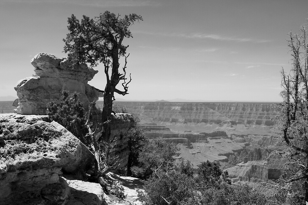 The Grand Canyon by jbmaverick