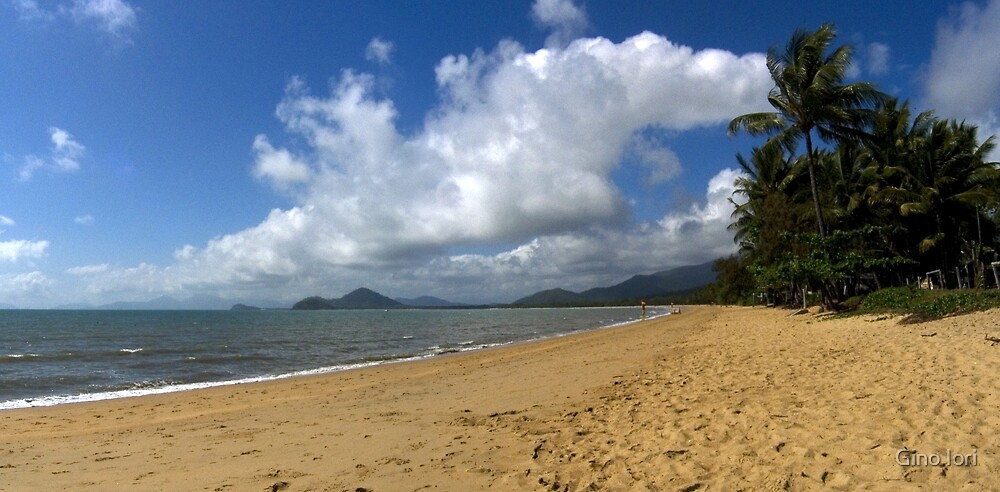 Palm Cove by Gino Iori