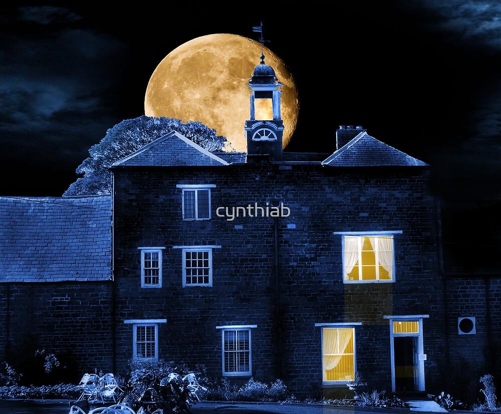 night time cafe by cynthiab