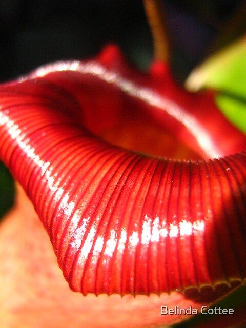 nice lips by Belinda Cottee