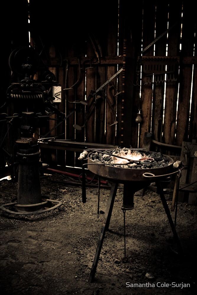 Mont De Lancey Blacksmithing 2 by Samantha Cole-Surjan
