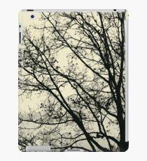 Fall Tree Silhouette Vector Yellow iPad Case/Skin