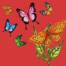Butterflies by MickDodds